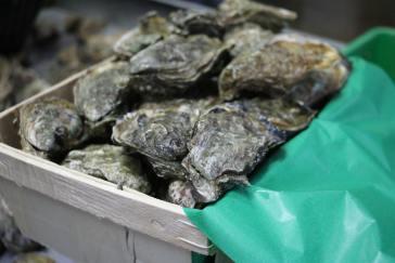 Bourriches d'huîtres
